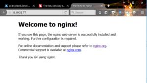 ngnix works!